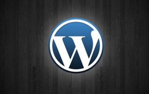 Construire une galerie vidéo sur WordPress
