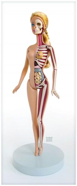 squelette-anatomie-barbie-1