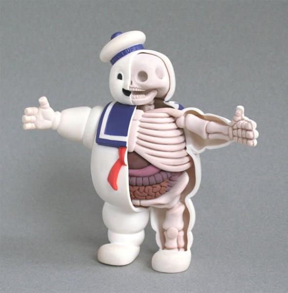 squelette-anatomie-fantome