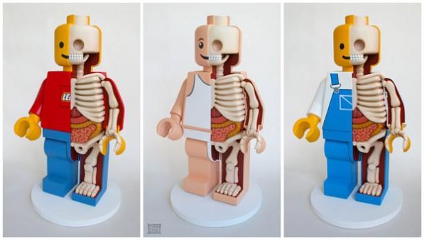 squelette-anatomie-lego-1