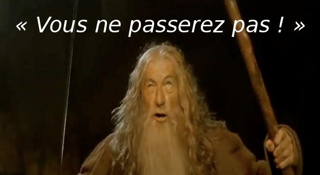 Gandalf-You-Shall-Not-Pass-Ian-McKellen
