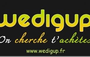 [Web] Wedigup, on cherche, t'achètes.